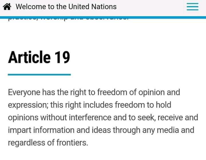 UN article